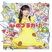 AKB48 Kokoro no Placard RegD