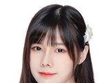 Wang Zi