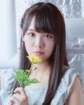 Fukuda Akari Aoi Himawari