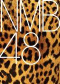 0208NMB48 logo