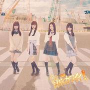 SKE48 - Sansei Kawaii Type-D Lim