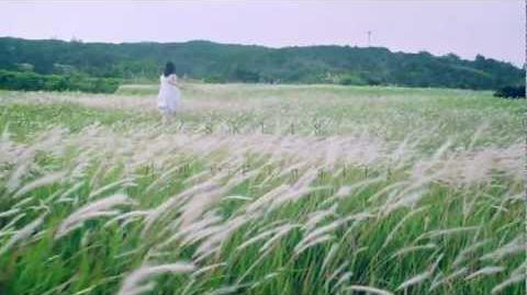 2012 1 25 on sale 8th.Single 片想いFinally MV(Short ver