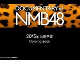 DOCUMENTARY of NMB48