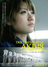 DOCUMENTARY of AKB48 No flower without rain Shoujo Tachi wa Namida no Ato ni Nani wo Miru?