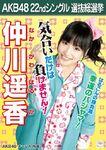 Nakagawa Haruka 3rd SSK AKB48