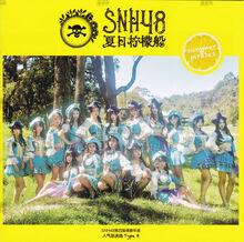 SNH4816thAlternativeB