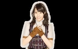 Fujie Reina AnY