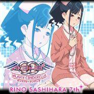 Sashiko - sasshii3
