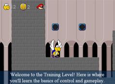 Training Level