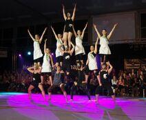 HSP-Show2013-MS