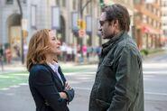Mein Kampf Mulder trifft auf Scully