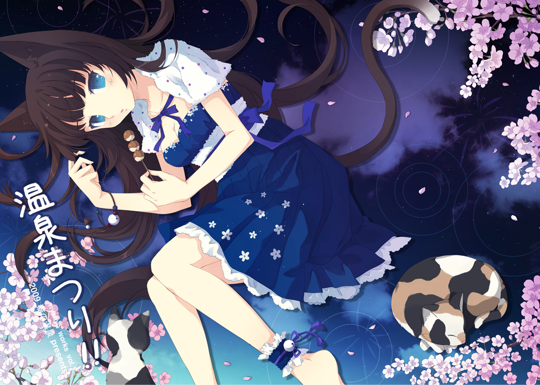 Image Konachan Com 135131 Animal Blue Eyes Brown Hair Cat