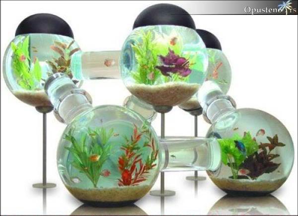 Neobican akvarijum