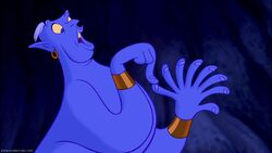 Rules of the Genie