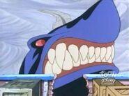 Sand Shark 24