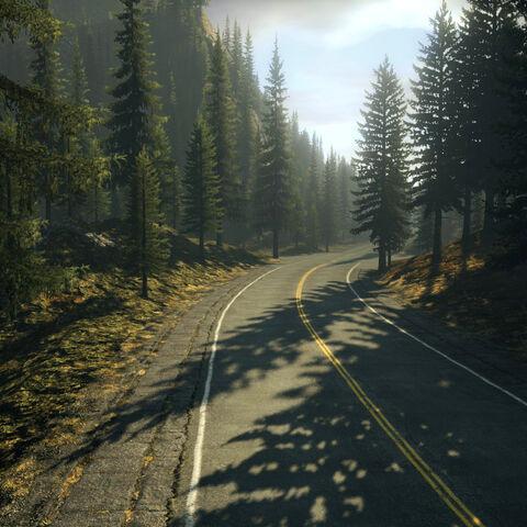 Droga przez las, prowadząca do miasteczka