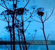 Hydroponic+Garden