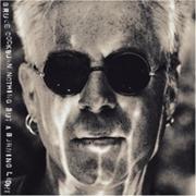 180px-Bruce Cockburn - Nothing But A Burning Light