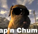 Cap'n Chumps