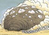Sand-whale