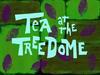 Tea at the treedome title card