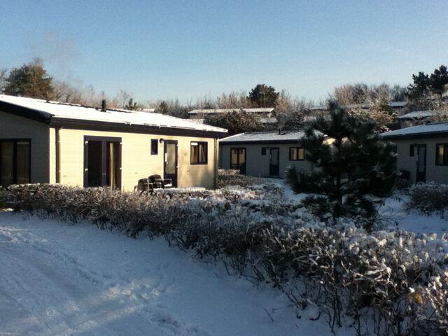 File:Sneeuw.jpg
