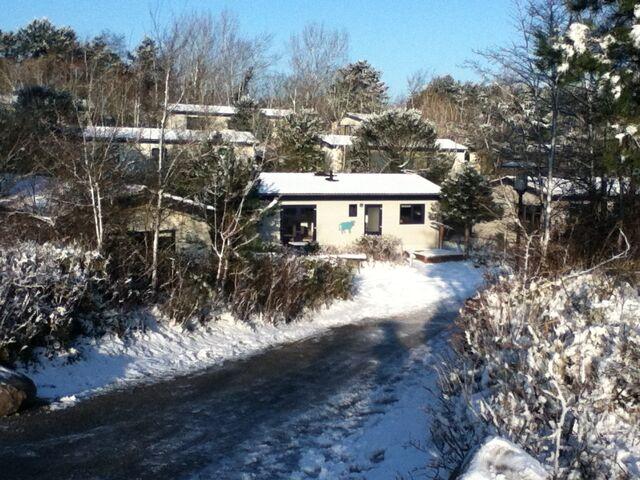 File:Sneeuwtje.jpg