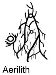 Aerilith - The Twilight Signar