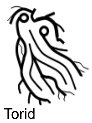 File:Torid - The Cold Signar.png