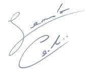 Leonardo's signature