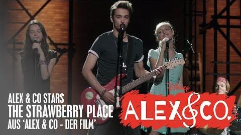 Alex & Co. Movie - The Strawberry Place