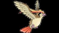 Pidgeot artwork