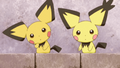 Lexi Pichu Brothers
