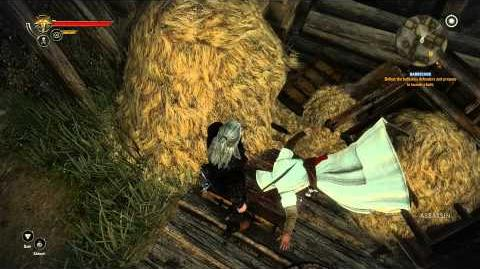 The Witcher 2 - Assassin's Creed Easter Egg