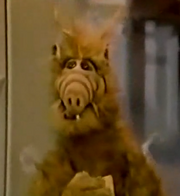 ALF-shocked