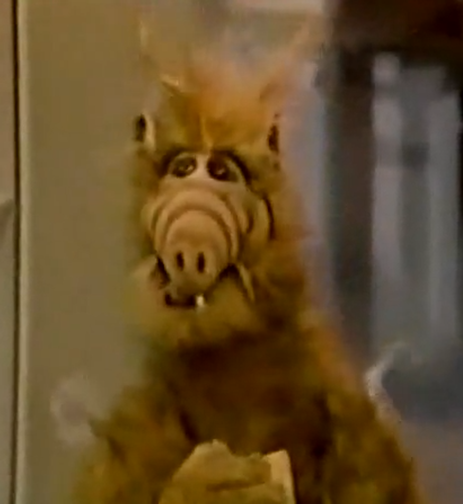Alf Quotes Try To Remember Part 1  Alf Wiki  Fandom Poweredwikia
