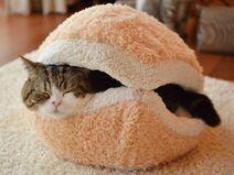 Cat-Burger-Pillow 3