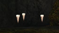 250px-Teeth