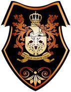 Рыцарица1 щит