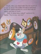 Alice in Wonderland - Its About Time (17)