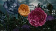 Alice-disneyscreencaps.com-2122