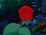 Alice-disneyscreencaps.com-3318