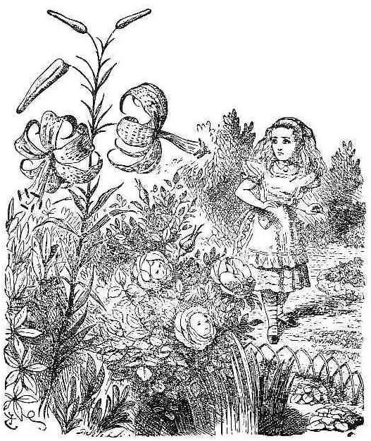 The Flowers Alice In Wonderland Wiki Fandom Powered By