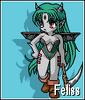 Feliss-4.x (1)