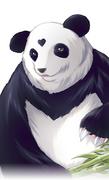 Daiakuji - Panda