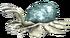 Myzostoma-0