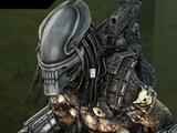 Predator Alien Head