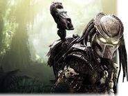 Predator-0