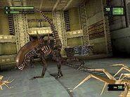 Alien Resurrection Game 10