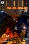 180px-367330-21239-128542-1-aliens-labyrinth super